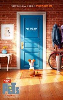 La-vida-secreta-de-tus-mascotas